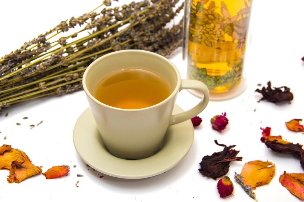 thé vert thé noir thé blanc - tasse de thé vert